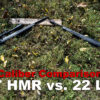 17 HMR vs 22 Long Rifle