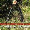 17 HMR vs 22 WMR