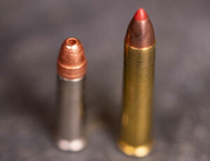 22 WMR ammo with 22 long rifle ammo