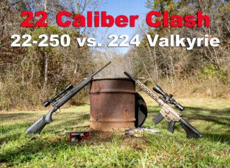 224 Valkyrie vs. 22-250