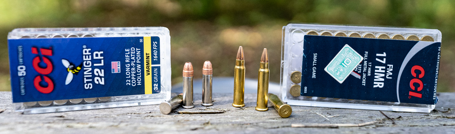 rimfire ammunition size comparison of the two rounds