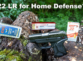 22LR for Home Defense – Big Enough Cartridge For Your Trust?