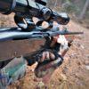 Deer Hunting: After the Shot