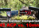 45 ACP vs 10mm