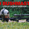 450 Bushmaster – A Rifle Caliber Overview