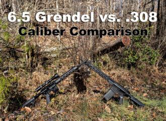 6.5 Grendel vs 308