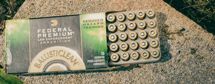 non-toxic ammo can be a safer option for pregnant shooters