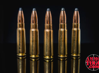 What Are Soft Point Bullets?