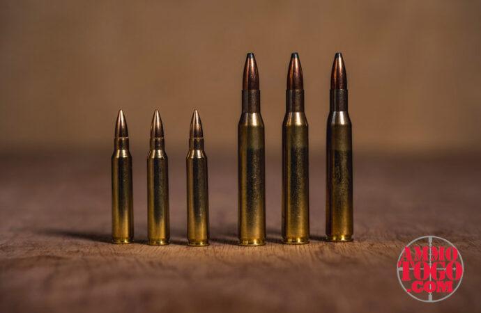 .223 vs. .270 Winchester