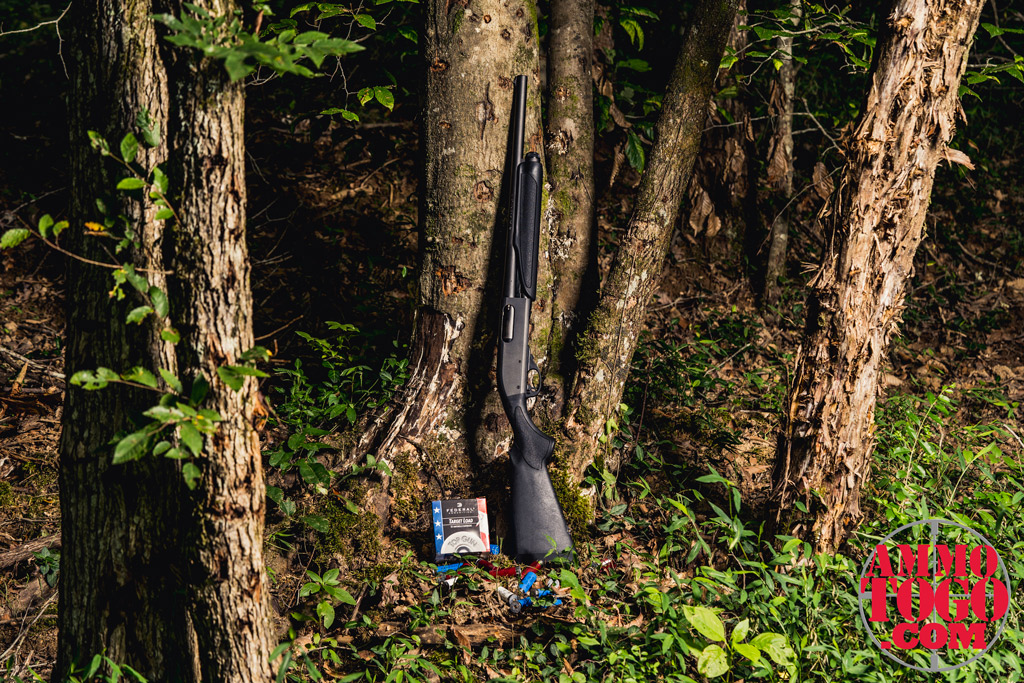 photo of a remington 870 shotgun with ammo leaning against a tree