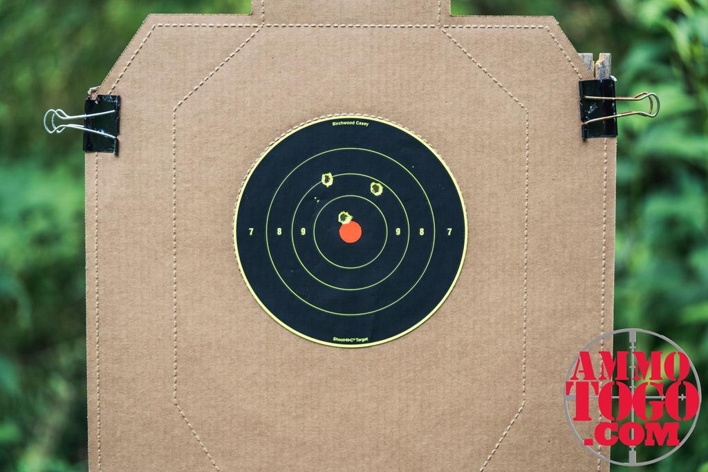 photo of target at a gun range