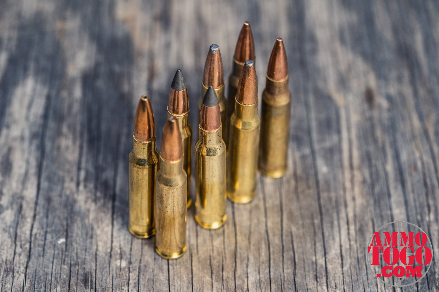 best bullets for deer hunting on a table