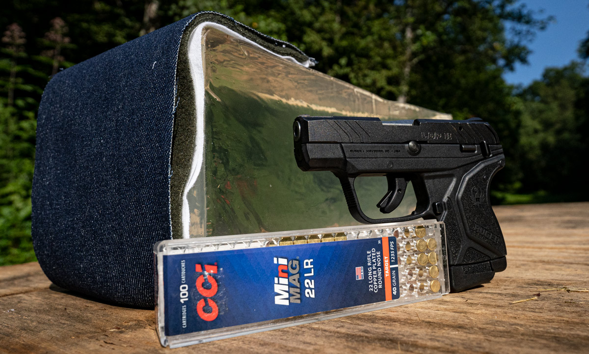 testing if 22lr is good for home defense with ammo and ballistic gelatin