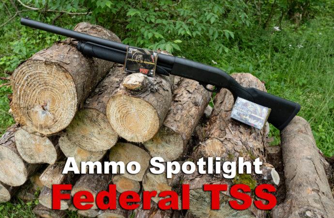 Federal TSS