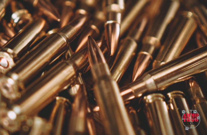 How to Store Ammo for Reliability When It Counts