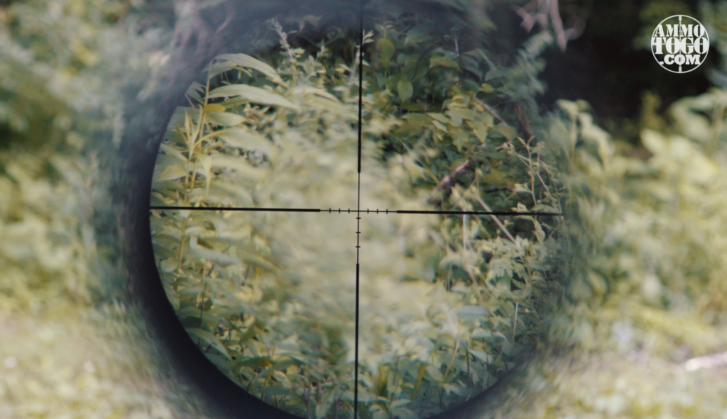 Clear Image of Rifle Scope Reticle
