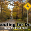 How to Find Deer – The Basics of Scouting
