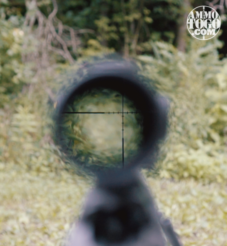 Halo in Rifle Scope