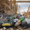 Duck Decoy Spreads – Where to Put Your Decoys