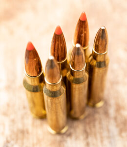 Grendel and 5.56 ammo