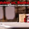 Birdshot vs. Buckshot – Best Home Defense Option