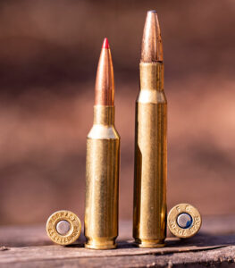 6.5 creedmoor ammo vs 30-06 ammo