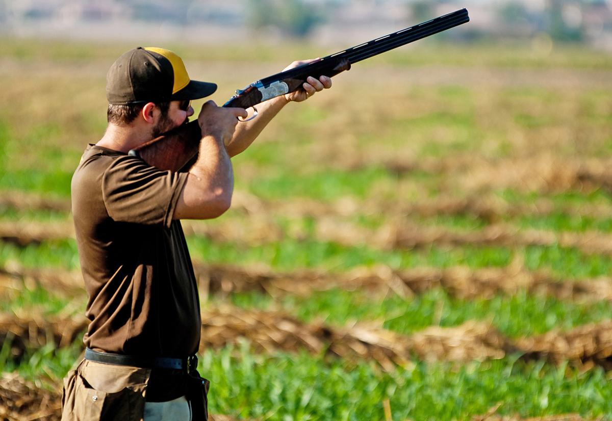 dove hunter in a field