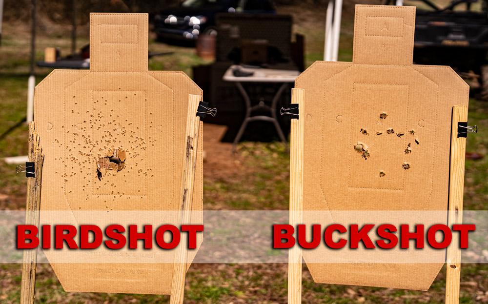 Firing birdshot vs buckshot at targets