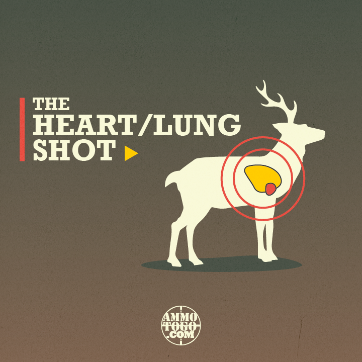 heart lung shot for deer hunting