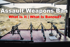 what is the assault weapons ban?