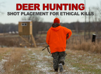 Where to Shoot a Deer: Shot Placement for Ethical Kills